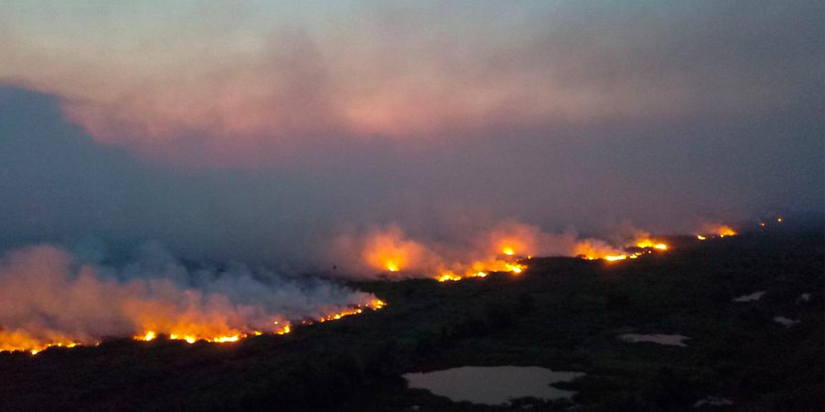 Pior cenário de queimadas no pantanal nos últimos 22 anos. (foto: Divulgação)