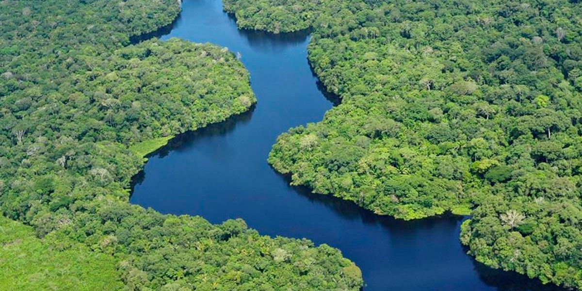Representantes de outros países em regiões amazônicas. (Foto: Divulgação)