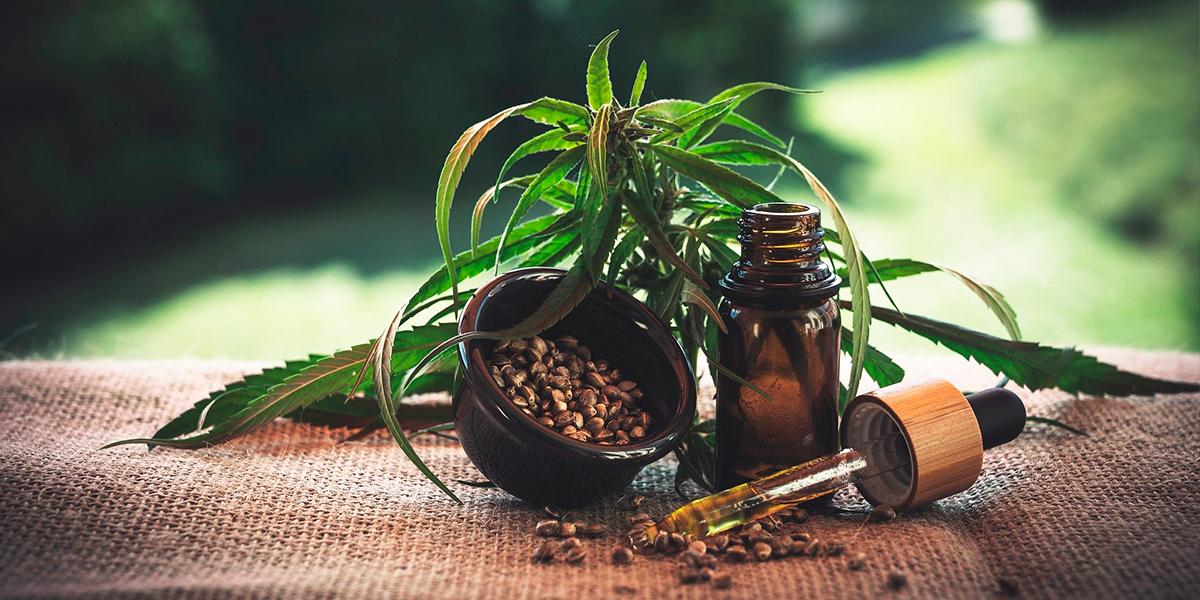 Projeto de lei pede legalização de produtos a base de maconha. (foto: Banco de imagens / pixabay)