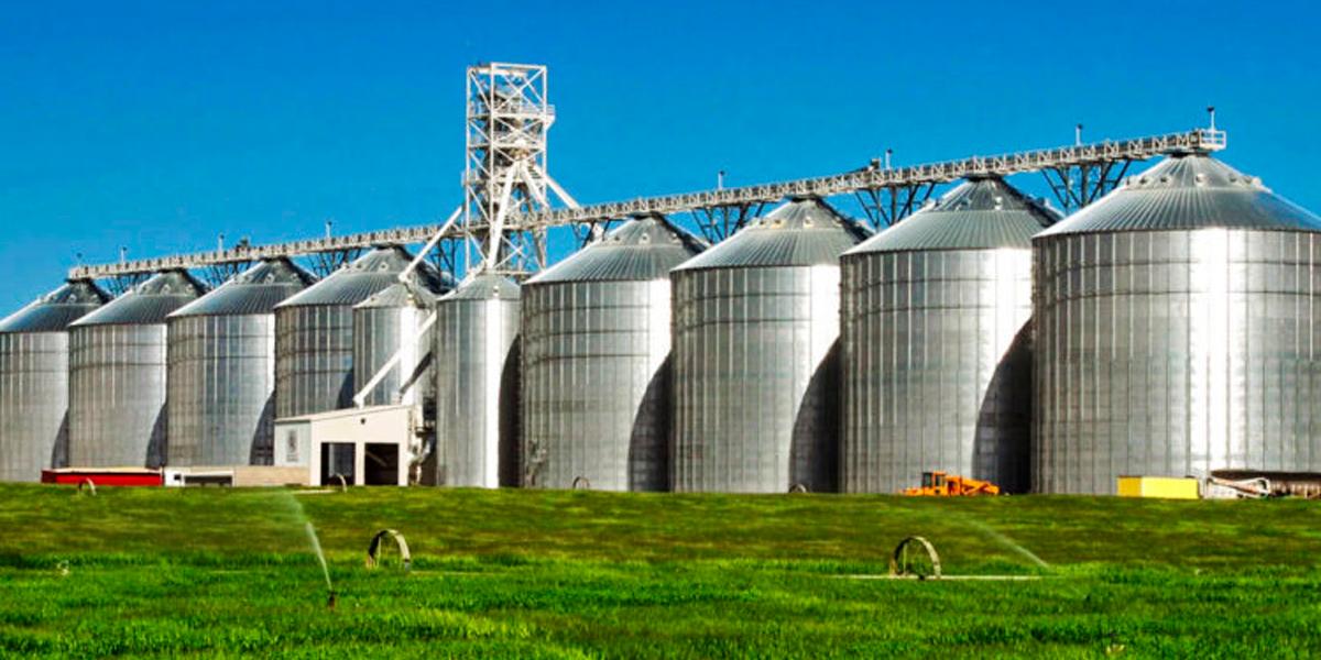 Problemas com armazenamento de grãos no estado de Mato Grosso. (Foto: Reprodução)
