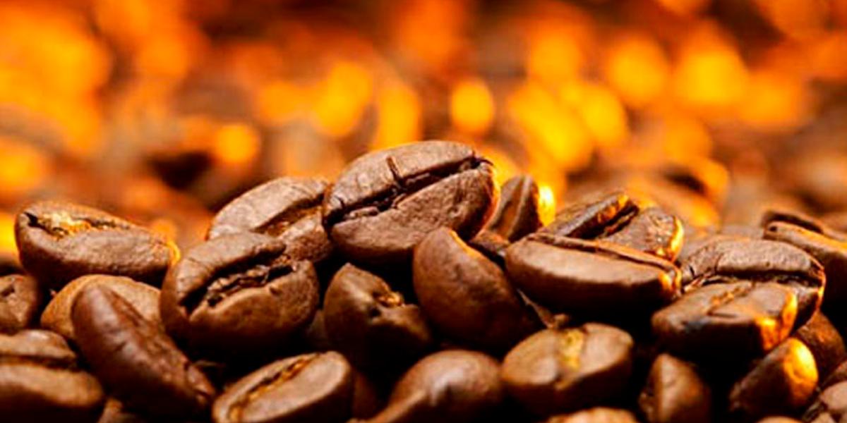 Incentivo para produção de café em Mato Grosso. (Foto: Divulgação)