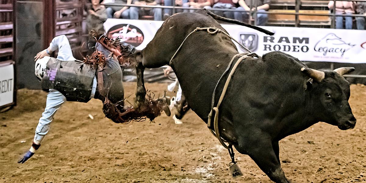 Abaixo-assinado pede o fim do Rodeio na Festa de Barretos. (Foto: Ilustrativa / Banco de Imagens)