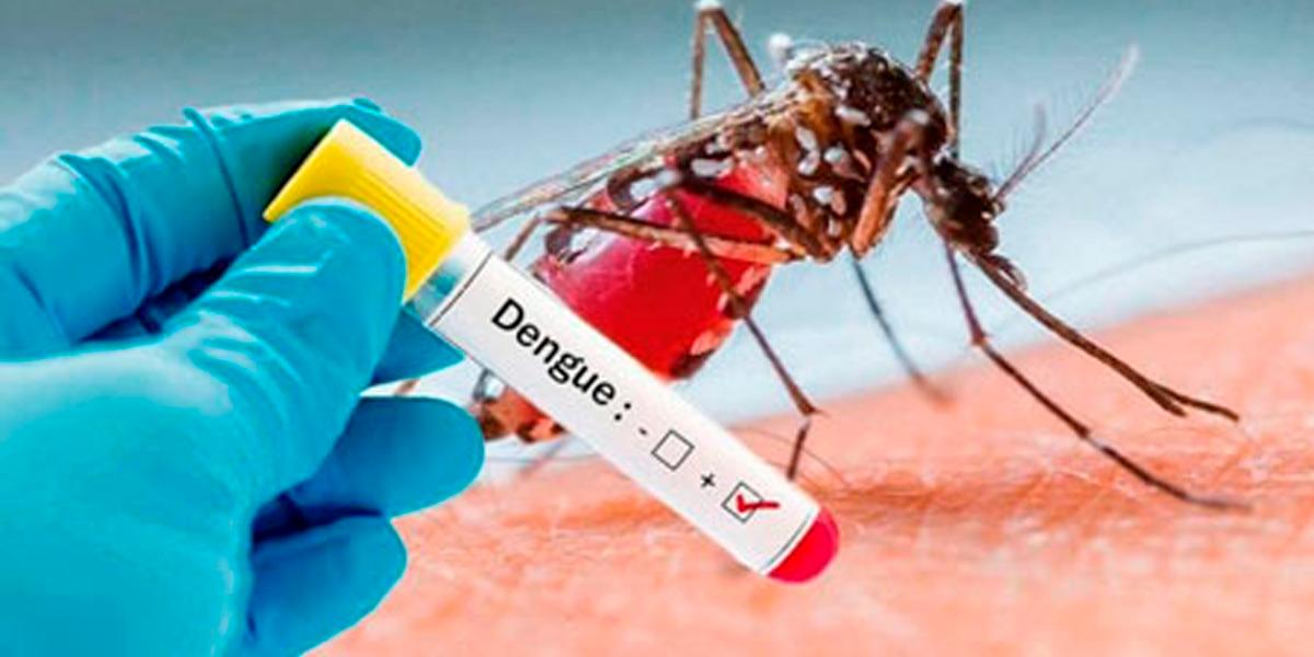 Sinop lidera o ranking com casos de dengue no Mato Grosso. (Foto: Reprodução)