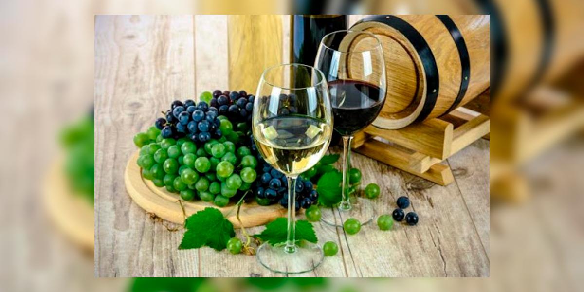 Aumento na venda de vinhos. (Foto: Divulgação)