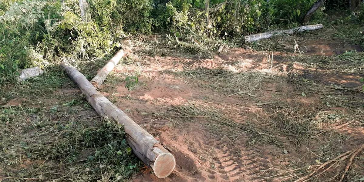 Cadastro Ambiental Rural em Mato Grosso. (Foto: Ibama / Divulgação)