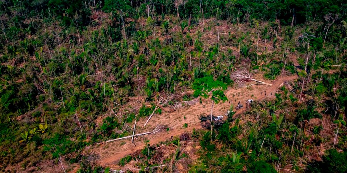 Desmatamento em Mato Grosso. (Foto: Secom-MT)